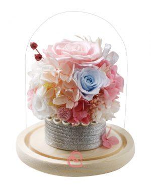 保鮮花盆栽玻璃罩(彩色)