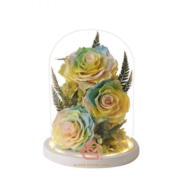 大玫瑰玻璃全景觀(彩色)