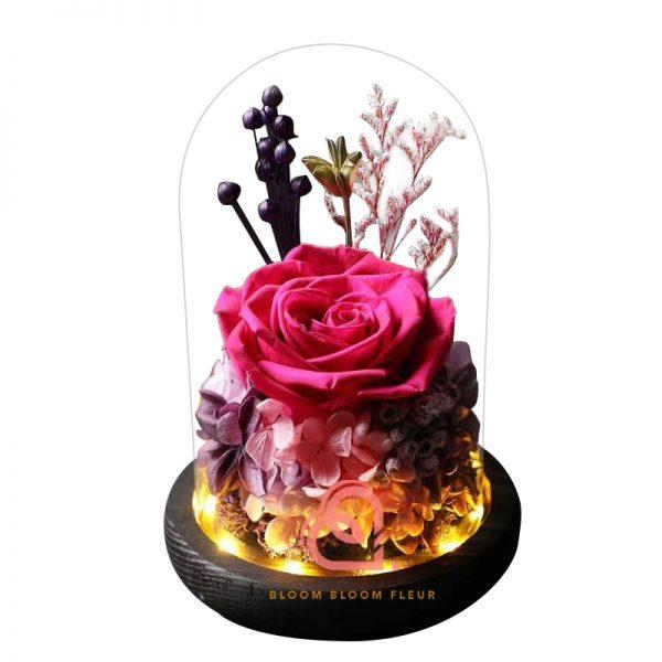 玫瑰綉球保鮮花玻璃罩(桃紅色)