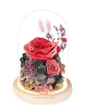 雙玫瑰玻璃罩(橙紅色)