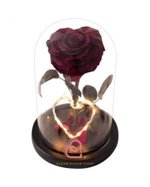 單支心形保鮮花玫瑰玻璃罩(深紅色)
