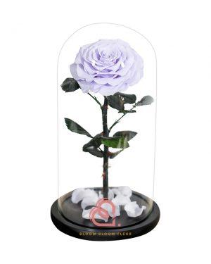 巨型單支玫瑰保鮮花玻璃罩(淺紫色)