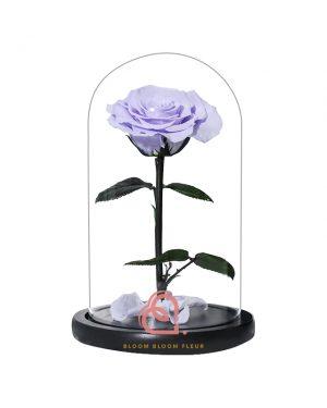 單支玫瑰保鮮花玻璃罩(淺紫色)