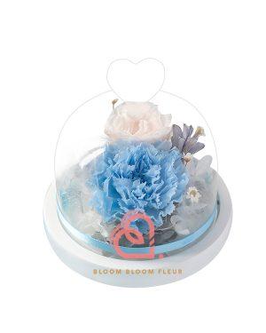 迷你愛心玻璃罩(淺藍色康乃馨)