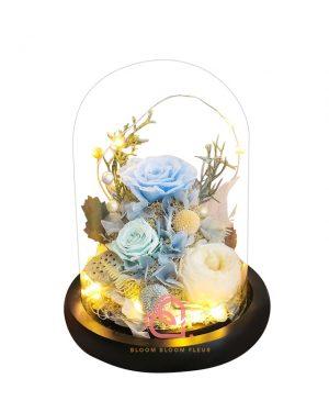 庭園玫瑰保鮮花玻璃罩(淺藍色)