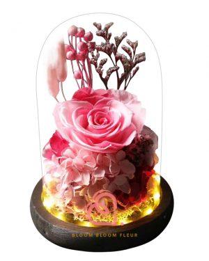 玫瑰綉球保鮮花玻璃罩(漸變粉紅色)
