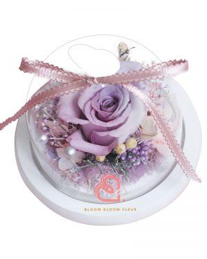 迷你愛心玻璃罩(漸變紫色玫瑰)