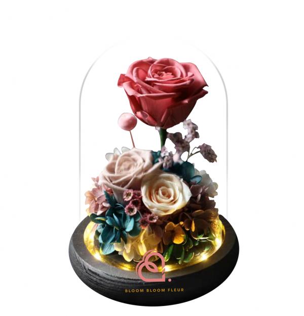 三支玫瑰花玻璃罩(珊瑚色)