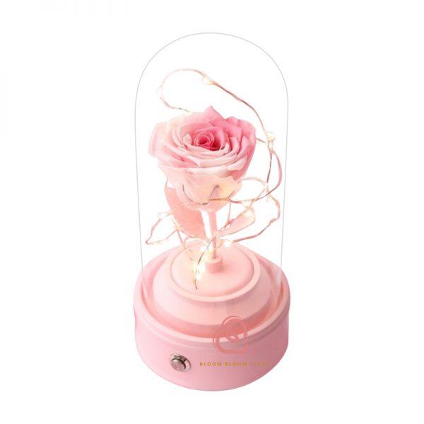 玫瑰保鮮花藍芽喇叭(粉紅白色)
