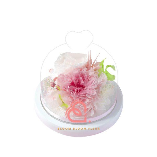 迷你愛心玻璃罩(粉紅色康乃馨)
