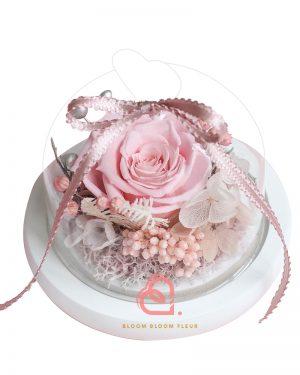 迷你愛心玻璃罩(粉紅色玫瑰)