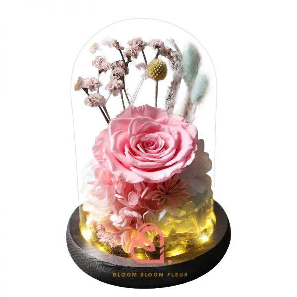 玫瑰綉球保鮮花玻璃罩(粉紅色)