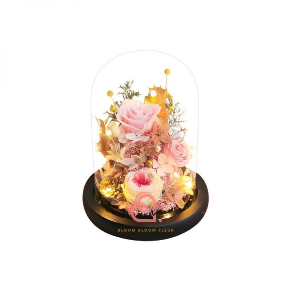 庭園玫瑰保鮮花玻璃罩(粉紅色)