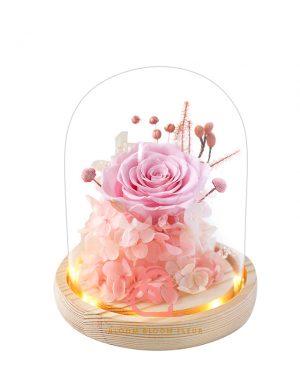 簡樸保鮮花玻璃罩(粉紅色)