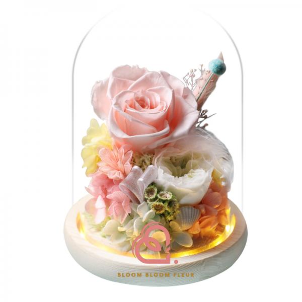 蝴蝶系列保鮮花玻璃罩(粉紅色)