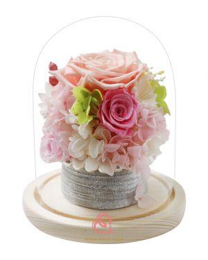 保鮮花盆栽玻璃罩(粉紅色)