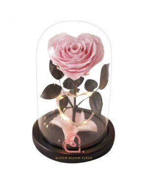 單支心形保鮮花玫瑰玻璃罩(粉紅色)