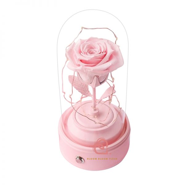 玫瑰保鮮花藍芽喇叭(粉紅色)