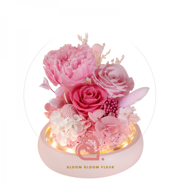 康乃馨保鮮花玻璃罩(粉紅色)