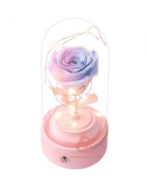 玫瑰保鮮花藍芽喇叭(粉紫藍色)
