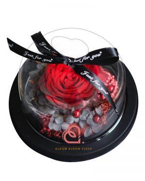 迷你愛心玻璃罩(紅色玫瑰)
