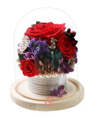 保鮮花盆栽玻璃罩(紅色)