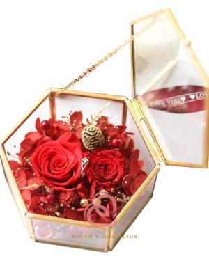 六角形介子盒(紅色)