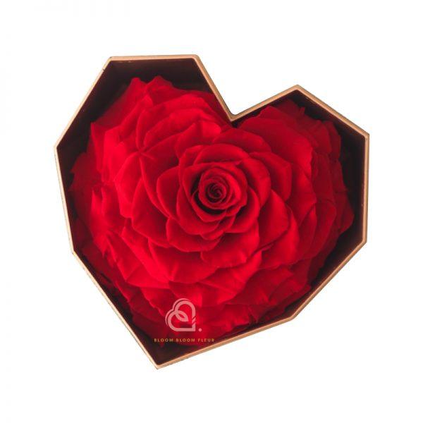 巨心形保鮮花細黑色鑽石禮盒(紅色)