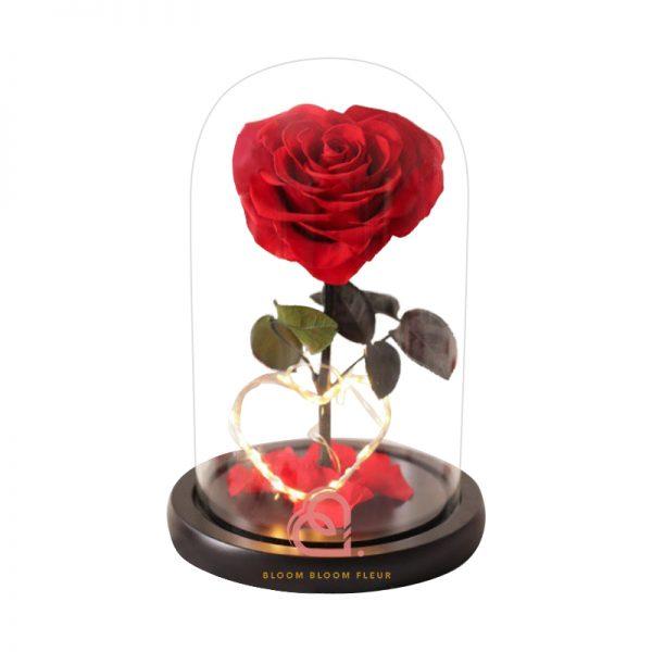 單支心形保鮮花玫瑰玻璃罩(紅色)