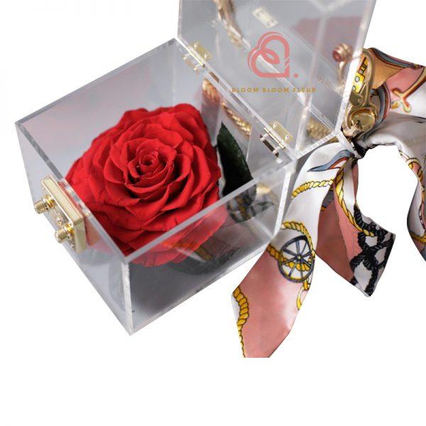 單支玫瑰保鮮花透明禮盒(紅色)