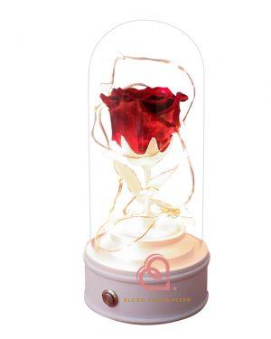玫瑰保鮮花藍芽喇叭(紅色)