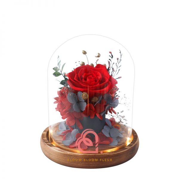 簡樸保鮮花玻璃罩(紅色)