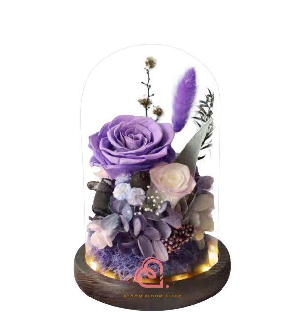 雙玫瑰玻璃罩(紫色)