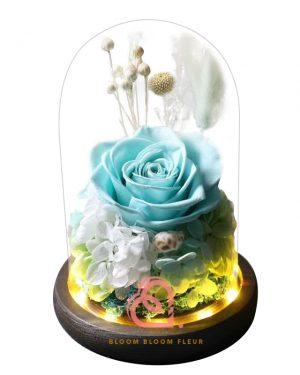玫瑰綉球保鮮花玻璃罩(藍綠色)
