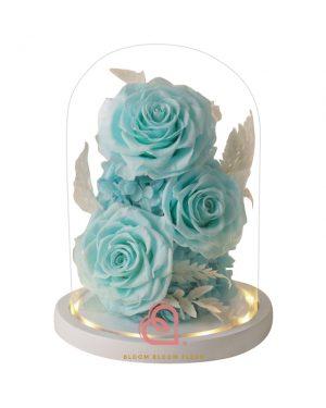 大玫瑰玻璃全景觀(藍綠色)