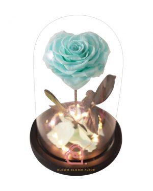 單支心形保鮮花玫瑰玻璃罩(藍綠色)