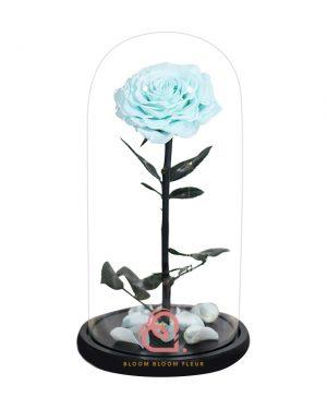 巨型單支玫瑰保鮮花玻璃罩(藍綠色)