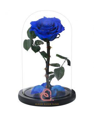 單支玫瑰保鮮花玻璃罩(藍色)
