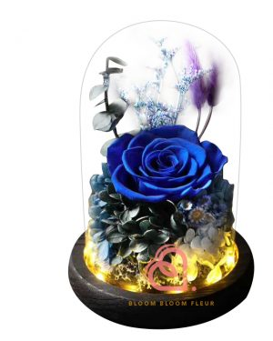 玫瑰綉球保鮮花玻璃罩(藍色)