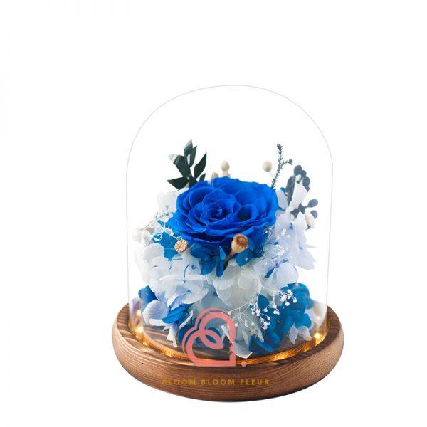 簡樸保鮮花玻璃罩(藍色)