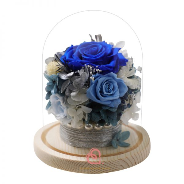 保鮮花盆栽玻璃罩(藍色)