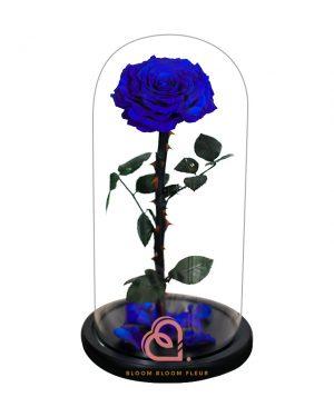巨型單支玫瑰保鮮花玻璃罩(藍色)