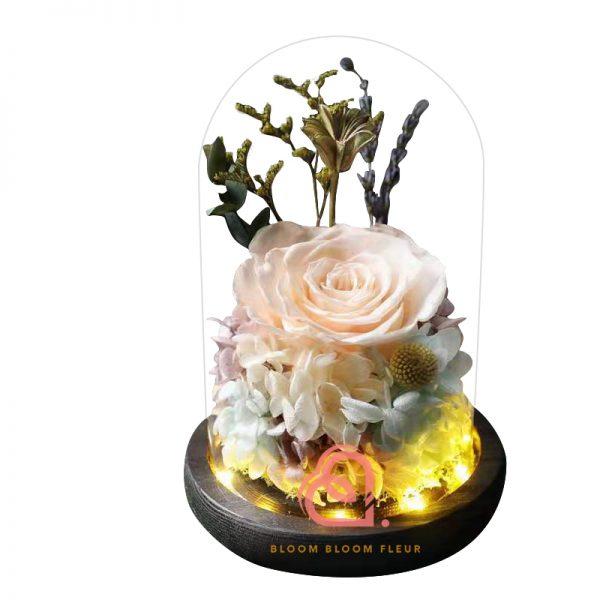 玫瑰綉球保鮮花玻璃罩(香檳色)