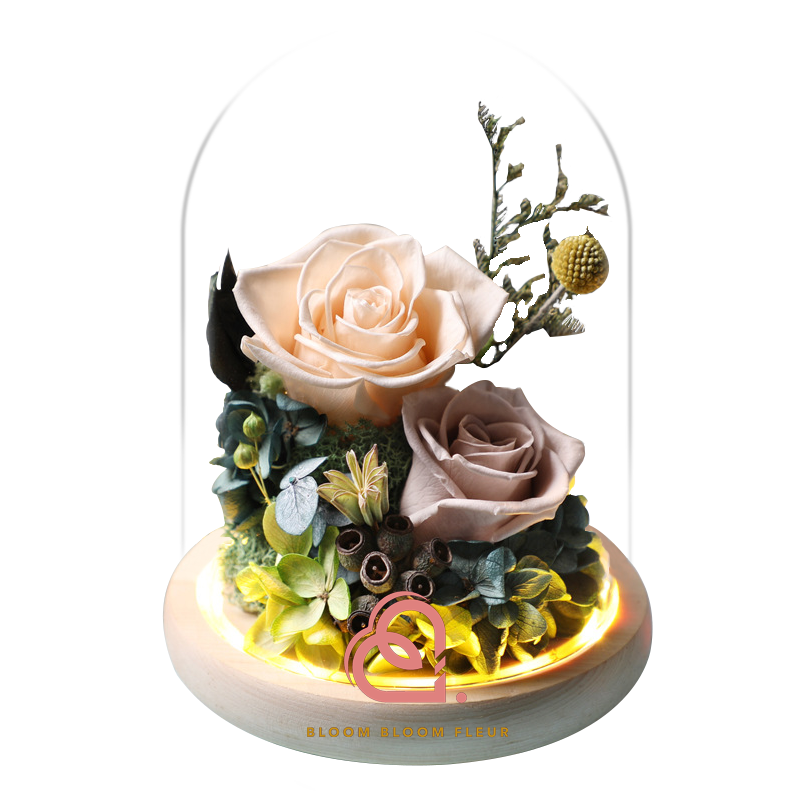 蝴蝶系列保鮮花玻璃罩(香檳色)