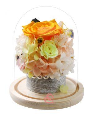 保鮮花盆栽玻璃罩(黃色)