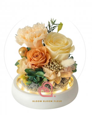 康乃馨保鮮花玻璃罩(黃色)