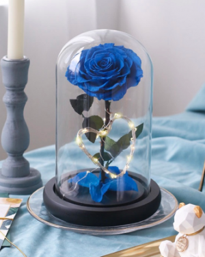 Single Preserved Flower